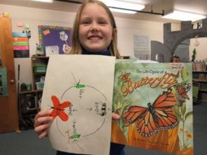 Life Cycle of a Butterfly – Garter Scale's Blog